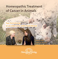 Homeopathic Treatment of Cancer in Animals - 1 DVD/Sue Armstrong