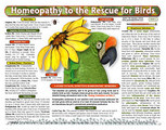 Homeopathy to the Rescue for Birds chart/poster/Lorelei Whitney