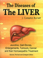 The Diseases of Liver/James Compton Burnett