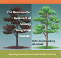 The Homeopathic Treatment of Sensory Integration Disorder/Amy Rothenberg