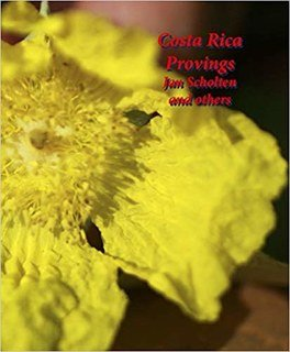 Costa Rica Provings, Jan Scholten