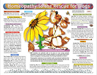 Homeopathy to the Rescue for Dogs chart/poster, Lorelei Whitney