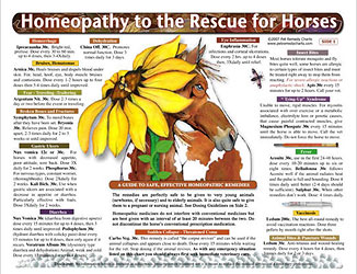 Homeopathy to the Rescue for Horses chart/poster, Lorelei Whitney