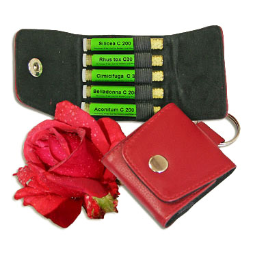 Rose Kit 5 on Red Leather Key Ring - Maute, Homeoplant