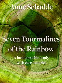 Seven Tourmalines of the Rainbow: A homeopathic study with case samples - E-Book, Anne Schadde / Jürgen Weiland