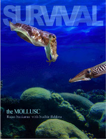 Survival - The Mollusc, Rajan Sankaran