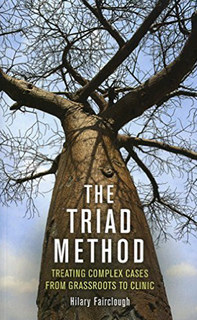 The Triad Method, Hilary  Fairclough