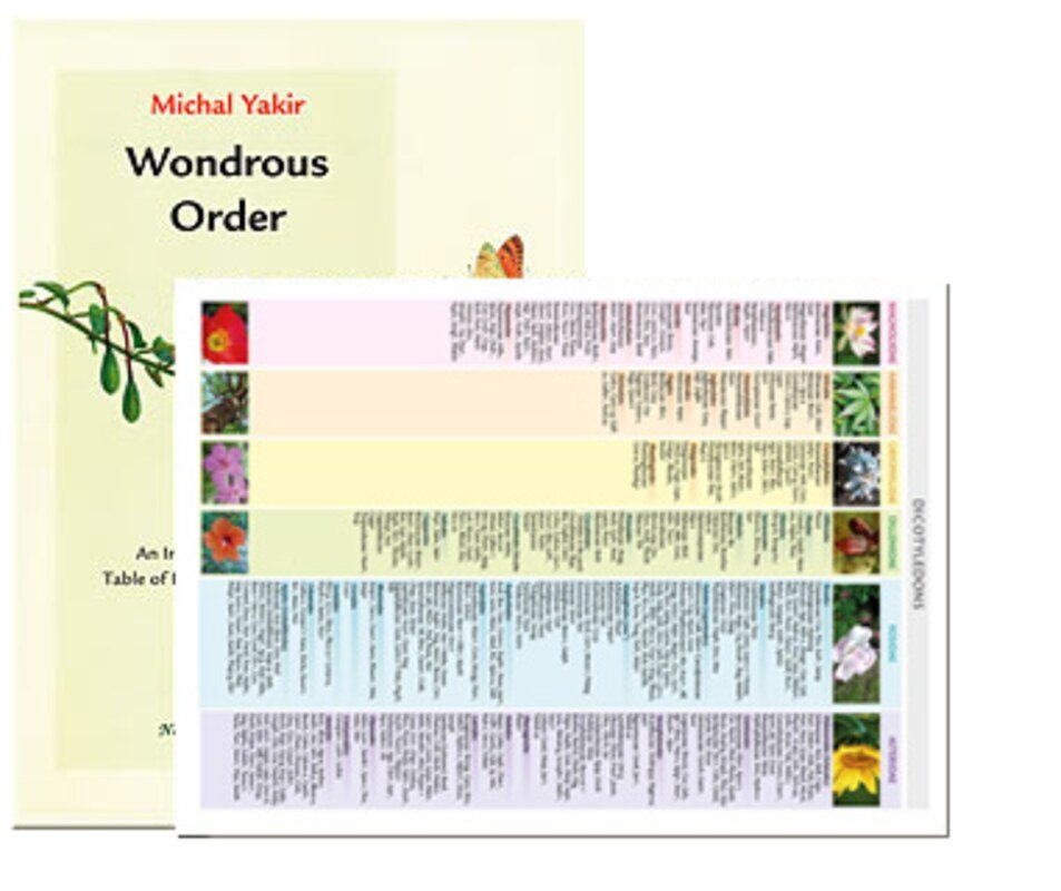 Table Of Plants + Booklet, Michal Yakir